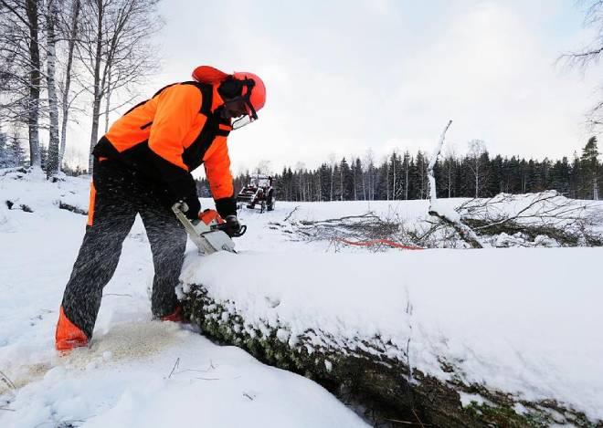 cutting in snow